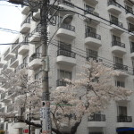 22-04|秀和南青山レジデンス-358