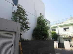 21-08|QC cube 神宮前421-8